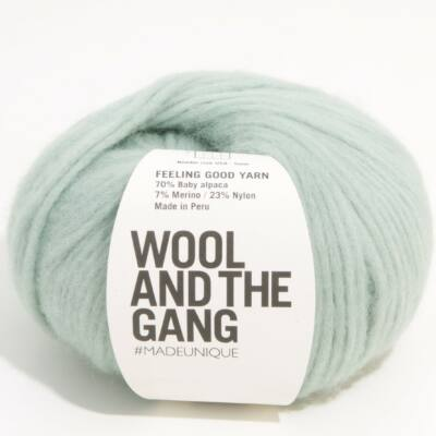 Wool And The Gang Feeling Good Yarn